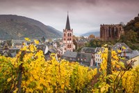 Germany, Rhineland-Pfalz, Bacharach, Elevated Town View In Autumn Fine Art Print