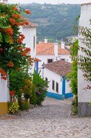 Portugal, Obidos Leira District Cobblestone Walkway Fine Art Print