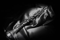 Black And White Still-Life Image Of A Brass Clarinet Fine Art Print