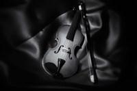 Still-Life Black And White Image Of A Violin Fine Art Print