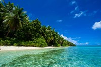 White Sand Beach In Turquoise Water In The Ant Atoll, Micronesia Fine Art Print