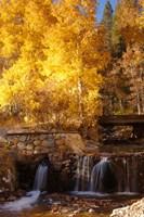 Autumn Waterfalls In The Sierra Fine Art Print
