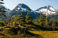 Mount Eccles Near Cordova, Alaska Fine Art Print