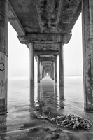 Scripps Pier, California (BW) Fine Art Print