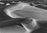 Valley Dunes Desert, California (BW) Fine Art Print