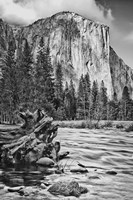 California, Yosemite, El Capitan (BW) Fine Art Print