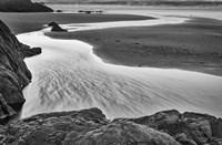 California, Mendocino Jughandler Creek (BW) Fine Art Print