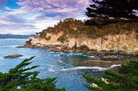 Rocky Cliff Along The Cypress Grove Trail Fine Art Print