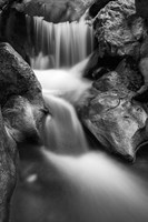 Cascade On Hare Creek (BW) Fine Art Print
