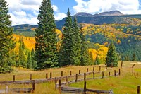 Autumn Colors In The San Juan Mountains, Colorado Fine Art Print