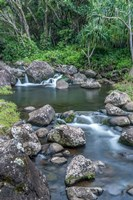 Limahuli Garden And Preserve, Kauai, Hawaii Fine Art Print