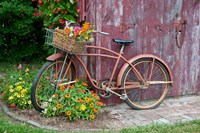 Old Bicycle With Flower Basket, Marion County, Illinois Fine Art Print