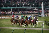 Horses Racing On Turf At Churchill Downs, Kentucky Fine Art Print