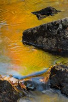 Abstract River, Acadia National Park, Maine Fine Art Print