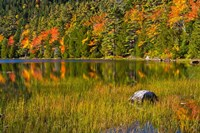Autumn Reflections In Bubble Pond, Acadia National Park, Maine Fine Art Print