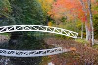 White Footbridge In Autumn, Somesville, Maine Fine Art Print