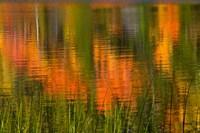 Bubble Pond, Acadia National Park, Maine Fine Art Print