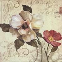 Fleurs De Paris 1 Fine Art Print