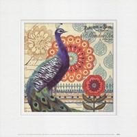 Vintage Peacock I Fine Art Print