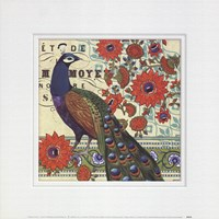 Vintage Peacock II Fine Art Print