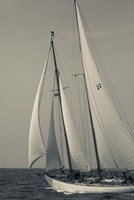 Schooner #22 Sailing, Massachusetts (BW) Fine Art Print