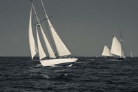 Schooner's Sailing In Cape Ann (BW) Fine Art Print
