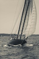 Single Schooner In Cape Ann, Massachusetts (BW) Fine Art Print