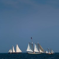 Three Schooners Sailing In Cape Ann Fine Art Print