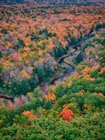Big Carp River, Porcupine Mountains Wilderness State Park, Michigan Fine Art Print