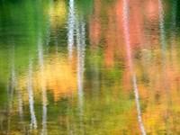 Panned Motion Blur Of An Autumn Woodland Reflection Fine Art Print