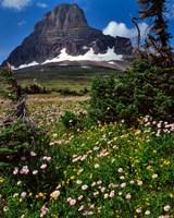 Clements Mountain, Glacier National Park, Montana Fine Art Print