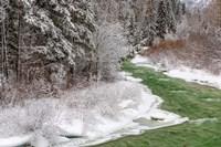 Coal Creek In The Winter, Montana Fine Art Print