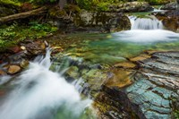 Cascade On Baring Creek, Glacier National Park, Montana Fine Art Print