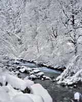 Snow On Boulder Creek, Oregon Fine Art Print