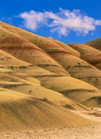 Painted Hills Unit, John Day Fossil Beds National Monument, Oregon Fine Art Print