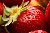 Close-Up Of Fresh Strawberry Fine Art Print