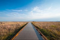 Walkway Going Through The Badlands National Park, South Dakota Fine Art Print