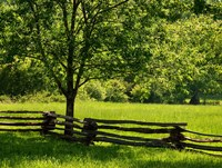 Old Wooden Fence In Cades Cove Fine Art Print