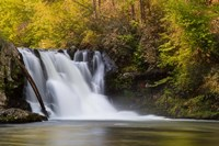 Abrams Falls Landscape, Great Smoky Mountains National Park Fine Art Print