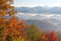 Morning Light Fog Viewed From Foothills Parkway Fine Art Print