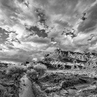 Sulphur Creek, Capitol Reef National Park, Utah (BW) Fine Art Print