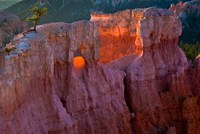 First Light On The Hoodoos At Sunrise Point, Bryce Canyon National Park Fine Art Print