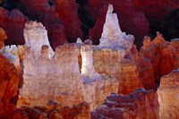 Hoodoos At Sunrise Point, Bryce Canyon National Park, Utah Fine Art Print