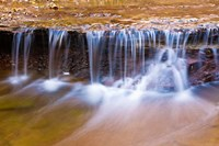 Cascade Along The Left Fork Of North Creek, Zion National Park, Utah Fine Art Print