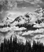 Mount Carrie And Carrie Glacier, Washington (BW) Fine Art Print