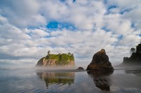 Early Morning Mist And Reflections Of Sea Stacks On Ruby Beach Fine Art Print