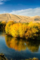 Autumn Color Along The Yakima River Fine Art Print