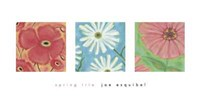 Spring Trio Fine Art Print