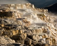 Mammoth Hot Springs, Yellowstone National Park, Wyoming Fine Art Print