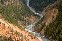 Inspiration Point, Yellowstone River, Grand Canyon Of The Yellowstone Fine Art Print